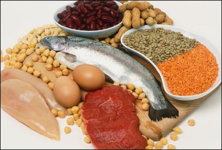سالمترن روش تأمین پروتئین برای بدن
