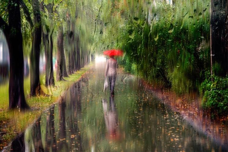 پروژههای عکاسی: خیابانهای بارانی