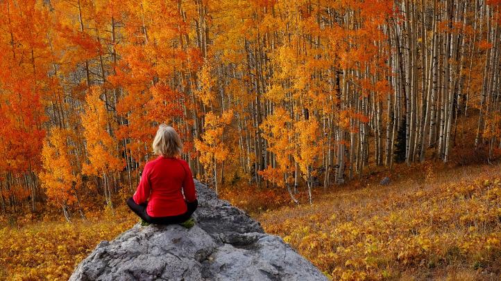 آیا پاییز افسرده تان می کند؟