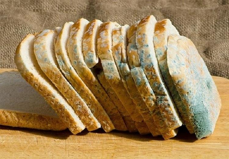 آیا نان کپک زده قابل خوردن است؟