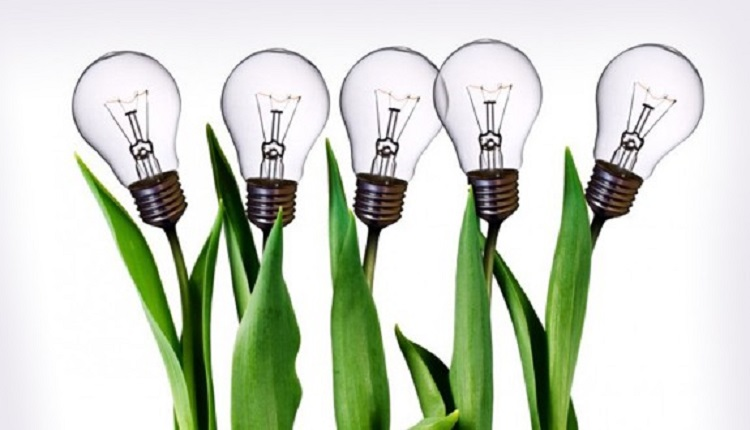باورهایی رایج و نادرست درباره خلاقیت و کسبوکار