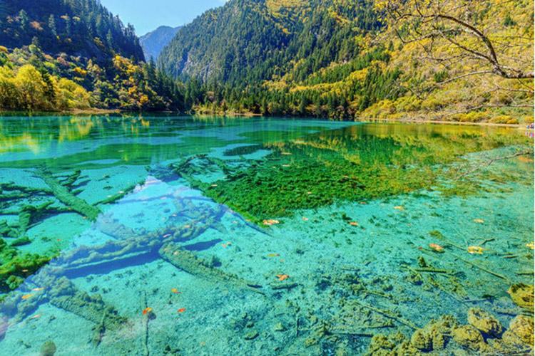 دریاچههایی که سطحی چون شیشه دارند