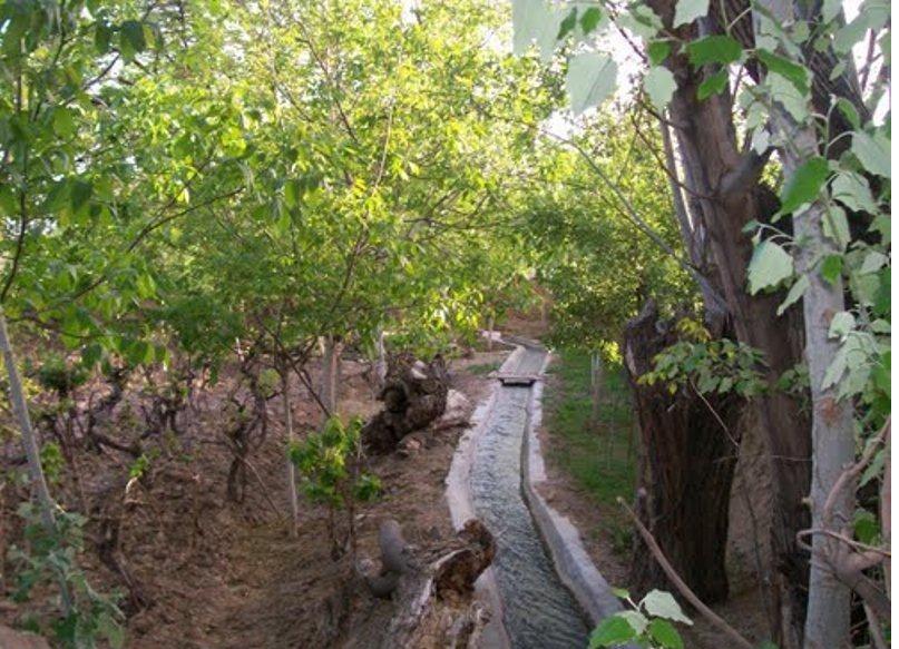 تهران رکورددار تخریب باغ ها در کشور