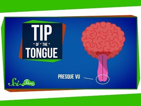 چرا گاهی واژهای نوک زبانمان گیر میکنند؟