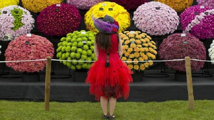 نگاهی کوتاه به نمایشگاه گل و گیاه لندن 2016