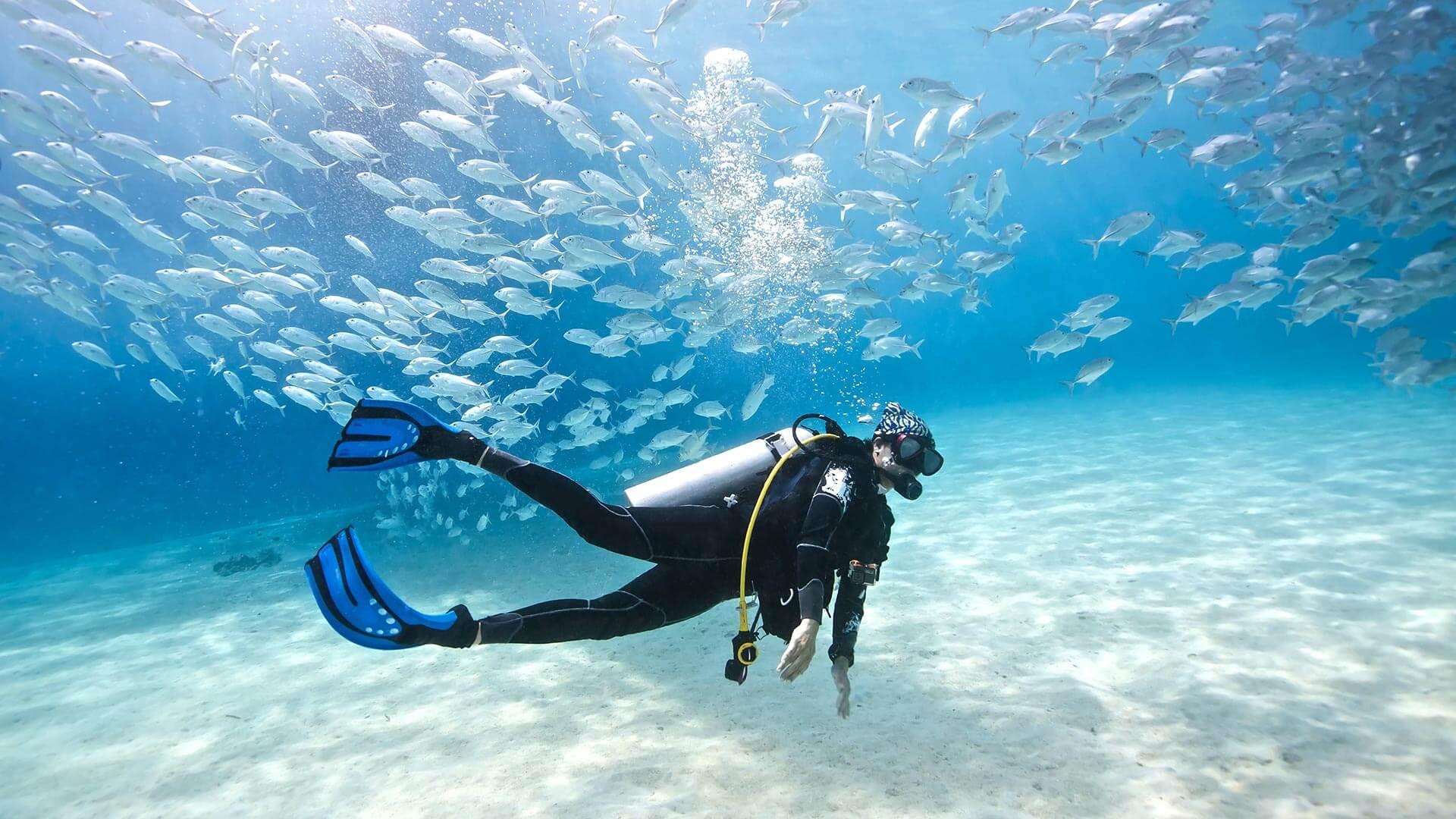 بهشت غواصان چه مناطقی از زمین هست؟