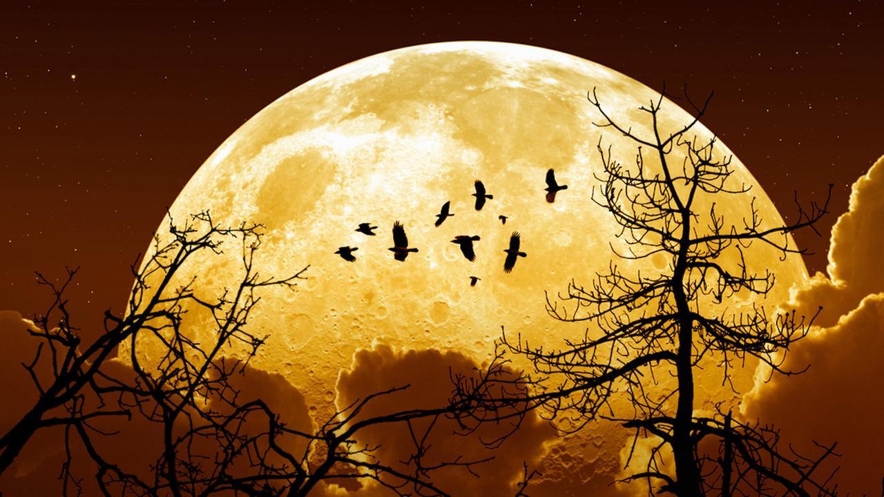 ماه بزرگ امشب را از دست ندهید